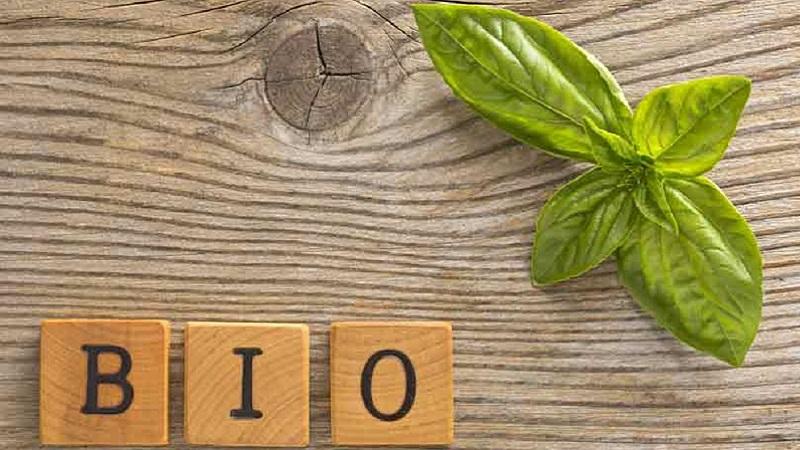SQ free: la prima azienda siciliana a puntare sugli alimenti speciali, dal senza glutine al bio